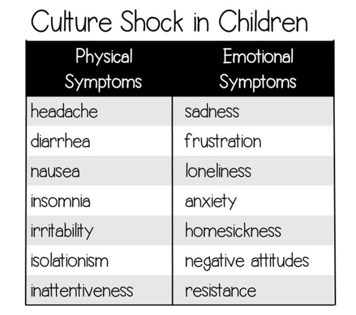 Culture Shock Chart
